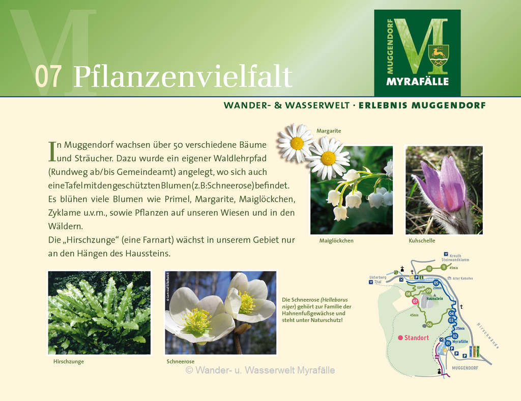 Themenstation 7.) Flora und Fauna