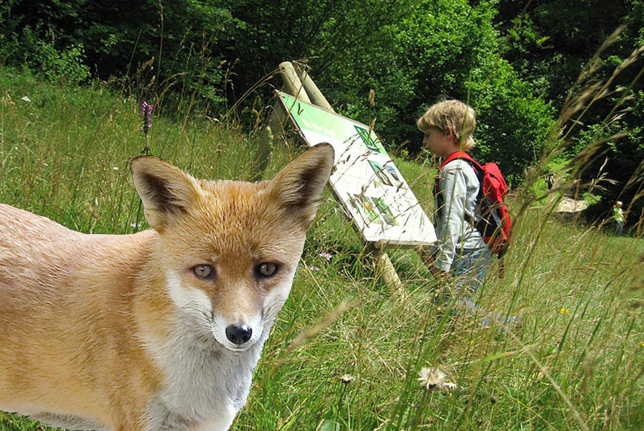 8.) Jagd